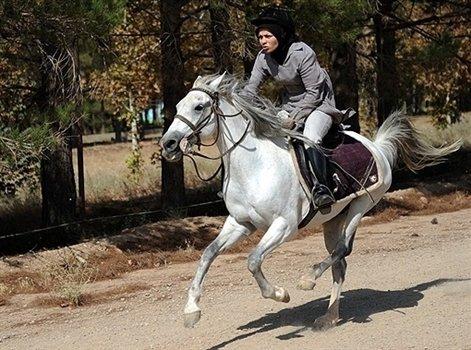 تاریخچه آموزش سوارکاری کودکان   باشگاه اسب سواری ماهان