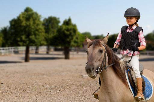 آموزش سوار کاری به کودکان در شیراز   باشگاه اسب سواری ماهان