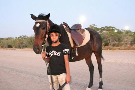 آموزش اسب سواری کودکان   باشگاه اسب سواری ماهان