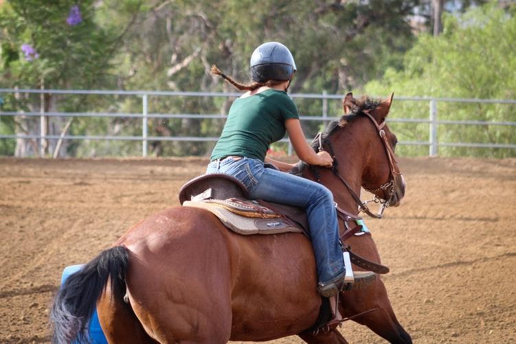 آموزش اسب سواری کودکان شیراز   باشگاه اسب سواری ماهان